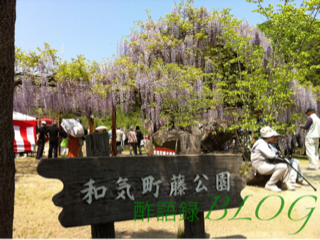 iphone/image-20120505232736.png