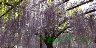 iphone/image-20120505232758.png